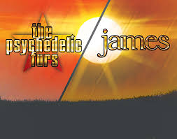 Canalside! Live Concert: The Psychedelic Furs and james - Historic  Cobblestone District